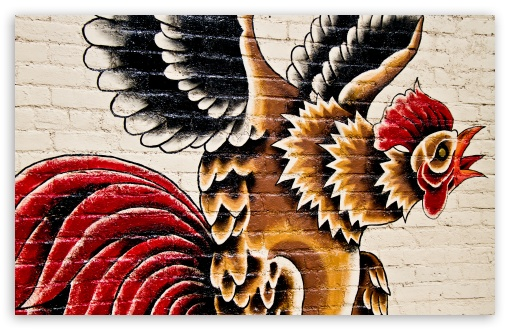 Rooster Street Art ❤ 4K UHD Wallpaper for Wide 16:10 5:3 Widescreen WHXGA WQXGA WUXGA WXGA WGA ; 4K UHD 16:9 Ultra High Definition 2160p 1440p 1080p 900p 720p ; UHD 16:9 2160p 1440p 1080p 900p 720p ; Standard 4:3 5:4 3:2 Fullscreen UXGA XGA SVGA QSXGA SXGA DVGA HVGA HQVGA ( Apple PowerBook G4 iPhone 4 3G 3GS iPod Touch ) ; Smartphone 5:3 WGA ; Tablet 1:1 ; iPad 1/2/Mini ; Mobile 4:3 5:3 3:2 16:9 5:4 - UXGA XGA SVGA WGA DVGA HVGA HQVGA ( Apple PowerBook G4 iPhone 4 3G 3GS iPod Touch ) 2160p 1440p 1080p 900p 720p QSXGA SXGA ; Dual 16:10 5:3 16:9 4:3 5:4 WHXGA WQXGA WUXGA WXGA WGA 2160p 1440p 1080p 900p 720p UXGA XGA SVGA QSXGA SXGA ;