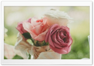 Roses Bouquet HD Wide Wallpaper for Widescreen