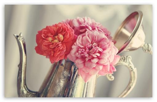 Roses Flowers, Antique Silver Teapot UltraHD Wallpaper for Wide 16:10 5:3 Widescreen WHXGA WQXGA WUXGA WXGA WGA ; UltraWide 21:9 24:10 ; 8K UHD TV 16:9 Ultra High Definition 2160p 1440p 1080p 900p 720p ; UHD 16:9 2160p 1440p 1080p 900p 720p ; Standard 4:3 3:2 Fullscreen UXGA XGA SVGA DVGA HVGA HQVGA ( Apple PowerBook G4 iPhone 4 3G 3GS iPod Touch ) ; iPad 1/2/Mini ; Mobile 4:3 5:3 3:2 16:9 - UXGA XGA SVGA WGA DVGA HVGA HQVGA ( Apple PowerBook G4 iPhone 4 3G 3GS iPod Touch ) 2160p 1440p 1080p 900p 720p ;