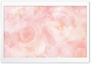 Roses Magic 2 HD Wide Wallpaper for Widescreen