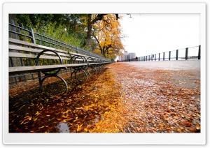 Row of Benches, Autumn HD Wide Wallpaper for Widescreen