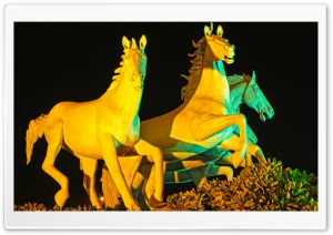 Running Horses Statue HD Wide Wallpaper for Widescreen