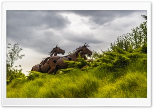 Running Wild Horses HD Wide Wallpaper for Widescreen
