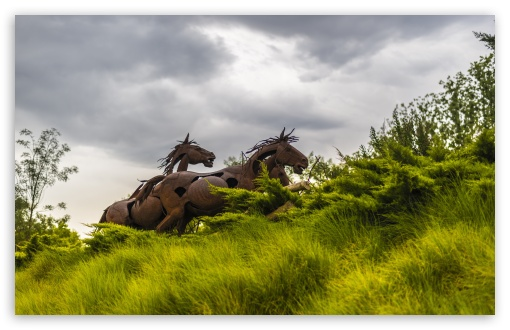 Running Wild Horses ❤ 4K UHD Wallpaper for Wide 16:10 5:3 Widescreen WHXGA WQXGA WUXGA WXGA WGA ; 4K UHD 16:9 Ultra High Definition 2160p 1440p 1080p 900p 720p ; UHD 16:9 2160p 1440p 1080p 900p 720p ; Standard 4:3 5:4 3:2 Fullscreen UXGA XGA SVGA QSXGA SXGA DVGA HVGA HQVGA ( Apple PowerBook G4 iPhone 4 3G 3GS iPod Touch ) ; Smartphone 5:3 WGA ; Tablet 1:1 ; iPad 1/2/Mini ; Mobile 4:3 5:3 3:2 16:9 5:4 - UXGA XGA SVGA WGA DVGA HVGA HQVGA ( Apple PowerBook G4 iPhone 4 3G 3GS iPod Touch ) 2160p 1440p 1080p 900p 720p QSXGA SXGA ; Dual 16:10 5:3 16:9 4:3 5:4 WHXGA WQXGA WUXGA WXGA WGA 2160p 1440p 1080p 900p 720p UXGA XGA SVGA QSXGA SXGA ;