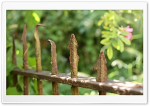 Rusty Fence HD Wide Wallpaper for Widescreen