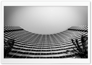 San Diego Marriott Marquis and Marina Black and White HD Wide Wallpaper for Widescreen
