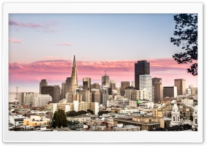 San Francisco City FiDi Ultra HD Wallpaper for 4K UHD Widescreen desktop, tablet & smartphone