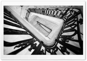 San Francisco City Hall Stairs HD Wide Wallpaper for Widescreen