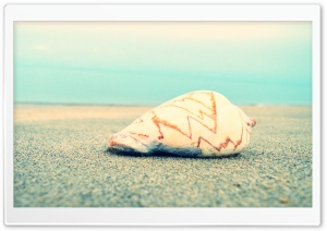 Sand N Shell HD Wide Wallpaper for Widescreen