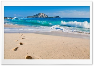 Sandy Beach HD Wide Wallpaper for Widescreen