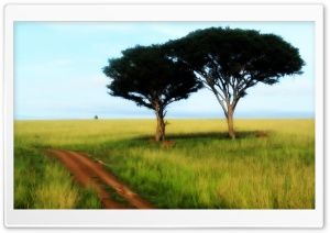 Savanna Trees HD Wide Wallpaper for Widescreen