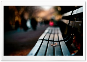 Save My Love For Loneliness HD Wide Wallpaper for 4K UHD Widescreen desktop & smartphone