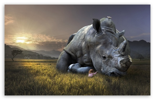 Download Save the Animals, Save the Earth UltraHD Wallpaper