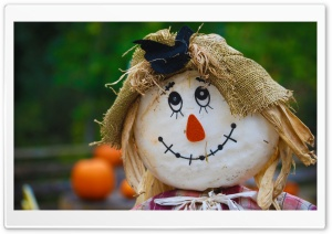 Scarecrow HD Wide Wallpaper for Widescreen
