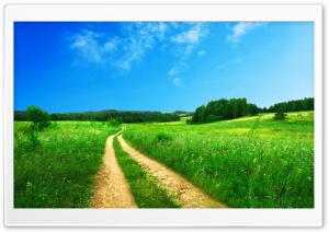 Scenery Of Nature HD Wide Wallpaper for Widescreen