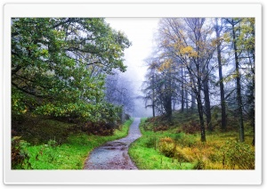 Scotland Galloway Forest Park HD Wide Wallpaper for Widescreen