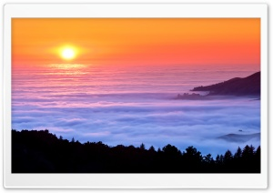 Sea Of Fog HD Wide Wallpaper for Widescreen