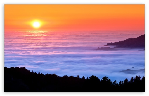 Sea Of Fog HD wallpaper for Wide 16:10 5:3 Widescreen WHXGA WQXGA WUXGA WXGA WGA ; HD 16:9 High Definition WQHD QWXGA 1080p 900p 720p QHD nHD ; UHD 16:9 WQHD QWXGA 1080p 900p 720p QHD nHD ; Standard 4:3 5:4 3:2 Fullscreen UXGA XGA SVGA QSXGA SXGA DVGA HVGA HQVGA devices ( Apple PowerBook G4 iPhone 4 3G 3GS iPod Touch ) ; Tablet 1:1 ; iPad 1/2/Mini ; Mobile 4:3 5:3 3:2 16:9 5:4 - UXGA XGA SVGA WGA DVGA HVGA HQVGA devices ( Apple PowerBook G4 iPhone 4 3G 3GS iPod Touch ) WQHD QWXGA 1080p 900p 720p QHD nHD QSXGA SXGA ; Dual 16:10 5:3 16:9 4:3 5:4 WHXGA WQXGA WUXGA WXGA WGA WQHD QWXGA 1080p 900p 720p QHD nHD UXGA XGA SVGA QSXGA SXGA ;