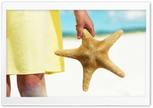 Sea Star HD Wide Wallpaper for Widescreen