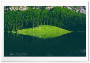 Seealpsee Lake, Switzerland HD Wide Wallpaper for Widescreen
