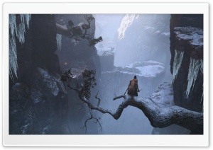 Sekiro Shadows Die Twice Video Game HD Wide Wallpaper for 4K UHD Widescreen desktop & smartphone