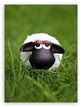 Shaun The Sheep HD wallpaper for Mobile 4:3 - UXGA XGA SVGA ;