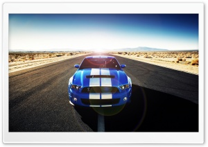 Shelby HD Wide Wallpaper for Widescreen