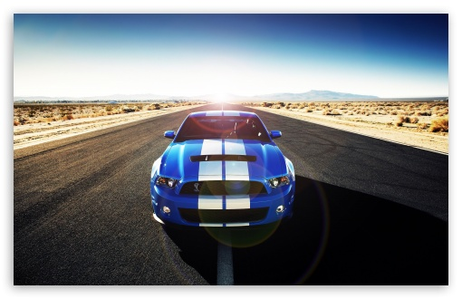 Shelby HD wallpaper for Wide 16:10 5:3 Widescreen WHXGA WQXGA WUXGA WXGA WGA ; HD 16:9 High Definition WQHD QWXGA 1080p 900p 720p QHD nHD ; Standard 4:3 5:4 3:2 Fullscreen UXGA XGA SVGA QSXGA SXGA DVGA HVGA HQVGA devices ( Apple PowerBook G4 iPhone 4 3G 3GS iPod Touch ) ; Tablet 1:1 ; iPad 1/2/Mini ; Mobile 4:3 5:3 3:2 16:9 5:4 - UXGA XGA SVGA WGA DVGA HVGA HQVGA devices ( Apple PowerBook G4 iPhone 4 3G 3GS iPod Touch ) WQHD QWXGA 1080p 900p 720p QHD nHD QSXGA SXGA ; Dual 16:10 5:3 16:9 4:3 5:4 WHXGA WQXGA WUXGA WXGA WGA WQHD QWXGA 1080p 900p 720p QHD nHD UXGA XGA SVGA QSXGA SXGA ;
