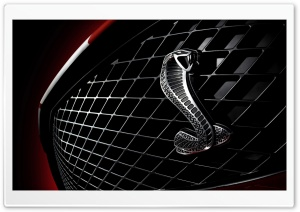Shelby Badge HD Wide Wallpaper for Widescreen