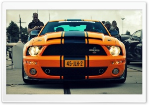 Shelby GT500 Super Snake HD Wide Wallpaper for Widescreen