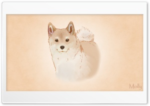 Shiba Inu Ultra HD Wallpaper for 4K UHD Widescreen desktop, tablet & smartphone