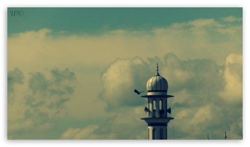 Shoaib Photography Mustafaabad lalyani Dist Kasur ❤ 4K UHD Wallpaper for 4K UHD 16:9 Ultra High Definition 2160p 1440p 1080p 900p 720p ; Mobile 16:9 - 2160p 1440p 1080p 900p 720p ;