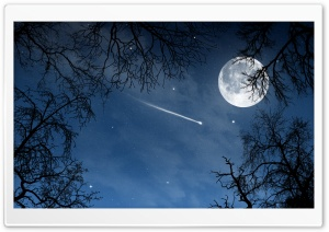 Shooting Star HD Wide Wallpaper for Widescreen