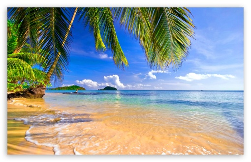 Shore Palms Tropical Beach UltraHD Wallpaper for Wide 16:10 5:3 Widescreen WHXGA WQXGA WUXGA WXGA WGA ; 8K UHD TV 16:9 Ultra High Definition 2160p 1440p 1080p 900p 720p ; Standard 4:3 5:4 3:2 Fullscreen UXGA XGA SVGA QSXGA SXGA DVGA HVGA HQVGA ( Apple PowerBook G4 iPhone 4 3G 3GS iPod Touch ) ; Tablet 1:1 ; iPad 1/2/Mini ; Mobile 4:3 5:3 3:2 16:9 5:4 - UXGA XGA SVGA WGA DVGA HVGA HQVGA ( Apple PowerBook G4 iPhone 4 3G 3GS iPod Touch ) 2160p 1440p 1080p 900p 720p QSXGA SXGA ;
