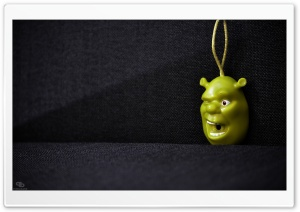 Shrek Key Holder HD Wide Wallpaper for Widescreen
