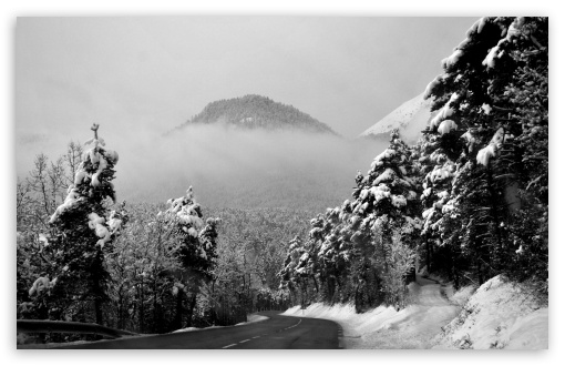 Silence And Stillness On A Winter Road HD wallpaper for Wide 16:10 5:3 Widescreen WHXGA WQXGA WUXGA WXGA WGA ; HD 16:9 High Definition WQHD QWXGA 1080p 900p 720p QHD nHD ; Standard 4:3 5:4 3:2 Fullscreen UXGA XGA SVGA QSXGA SXGA DVGA HVGA HQVGA devices ( Apple PowerBook G4 iPhone 4 3G 3GS iPod Touch ) ; Tablet 1:1 ; iPad 1/2/Mini ; Mobile 4:3 5:3 3:2 16:9 5:4 - UXGA XGA SVGA WGA DVGA HVGA HQVGA devices ( Apple PowerBook G4 iPhone 4 3G 3GS iPod Touch ) WQHD QWXGA 1080p 900p 720p QHD nHD QSXGA SXGA ;