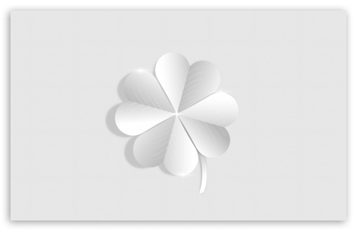 Silver Lucky Four Leaf Clover Ultra Hd Desktop Background