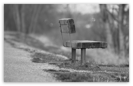 Single Bench HD wallpaper for Wide 16:10 5:3 Widescreen WHXGA WQXGA WUXGA WXGA WGA ; HD 16:9 High Definition WQHD QWXGA 1080p 900p 720p QHD nHD ; Standard 4:3 5:4 3:2 Fullscreen UXGA XGA SVGA QSXGA SXGA DVGA HVGA HQVGA devices ( Apple PowerBook G4 iPhone 4 3G 3GS iPod Touch ) ; Tablet 1:1 ; iPad 1/2/Mini ; Mobile 4:3 5:3 3:2 16:9 5:4 - UXGA XGA SVGA WGA DVGA HVGA HQVGA devices ( Apple PowerBook G4 iPhone 4 3G 3GS iPod Touch ) WQHD QWXGA 1080p 900p 720p QHD nHD QSXGA SXGA ;