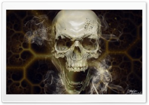 Skull Ultra HD Wallpaper for 4K UHD Widescreen desktop, tablet & smartphone