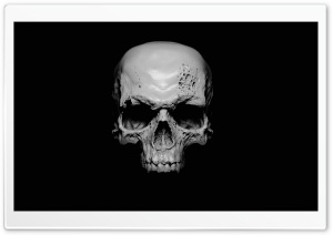 Skull HD Wide Wallpaper for Widescreen