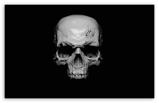 Skull ❤ 4K UHD Wallpaper for Wide 16:10 5:3 Widescreen WHXGA WQXGA WUXGA WXGA WGA ; 4K UHD 16:9 Ultra High Definition 2160p 1440p 1080p 900p 720p ; Standard 4:3 5:4 3:2 Fullscreen UXGA XGA SVGA QSXGA SXGA DVGA HVGA HQVGA ( Apple PowerBook G4 iPhone 4 3G 3GS iPod Touch ) ; Tablet 1:1 ; iPad 1/2/Mini ; Mobile 4:3 5:3 3:2 16:9 5:4 - UXGA XGA SVGA WGA DVGA HVGA HQVGA ( Apple PowerBook G4 iPhone 4 3G 3GS iPod Touch ) 2160p 1440p 1080p 900p 720p QSXGA SXGA ;