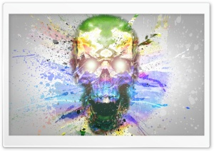 Skull-Splash Art HD Wide Wallpaper for Widescreen