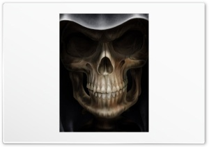 Skulls Grin HD Wide Wallpaper for Widescreen