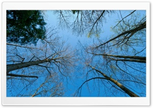Sky Perspective View HD Wide Wallpaper for Widescreen