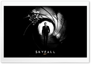 Skyfall 007 (2012) HD Wide Wallpaper for Widescreen