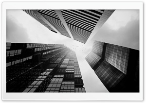 Skyscrapers In Black And White HD Wide Wallpaper for 4K UHD Widescreen desktop & smartphone