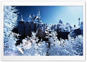 Sleeping Beauty Castle Winter HD Wide Wallpaper for Widescreen