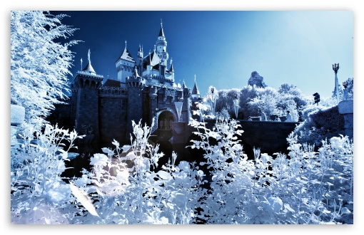 Sleeping Beauty Castle Winter HD wallpaper for Wide 16:10 5:3 Widescreen WHXGA WQXGA WUXGA WXGA WGA ; HD 16:9 High Definition WQHD QWXGA 1080p 900p 720p QHD nHD ; Standard 4:3 5:4 3:2 Fullscreen UXGA XGA SVGA QSXGA SXGA DVGA HVGA HQVGA devices ( Apple PowerBook G4 iPhone 4 3G 3GS iPod Touch ) ; Tablet 1:1 ; iPad 1/2/Mini ; Mobile 4:3 5:3 3:2 16:9 5:4 - UXGA XGA SVGA WGA DVGA HVGA HQVGA devices ( Apple PowerBook G4 iPhone 4 3G 3GS iPod Touch ) WQHD QWXGA 1080p 900p 720p QHD nHD QSXGA SXGA ;