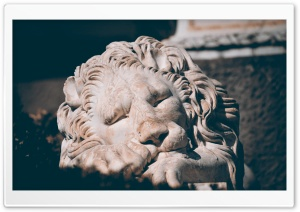 Sleeping Lion Sculpture HD Wide Wallpaper for Widescreen