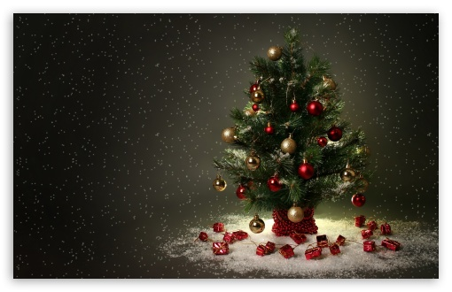 Small Christmas Tree HD wallpaper for Standard 4:3 5:4 Fullscreen UXGA XGA SVGA QSXGA SXGA ; Wide 16:10 5:3 Widescreen WHXGA WQXGA WUXGA WXGA WGA ; HD 16:9 High Definition WQHD QWXGA 1080p 900p 720p QHD nHD ; Other 3:2 DVGA HVGA HQVGA devices ( Apple PowerBook G4 iPhone 4 3G 3GS iPod Touch ) ; Mobile VGA WVGA iPhone iPad PSP Phone - VGA QVGA Smartphone ( PocketPC GPS iPod Zune BlackBerry HTC Samsung LG Nokia Eten Asus ) WVGA WQVGA Smartphone ( HTC Samsung Sony Ericsson LG Vertu MIO ) HVGA Smartphone ( Apple iPhone iPod BlackBerry HTC Samsung Nokia ) Sony PSP Zune HD Zen ; Tablet 2 Android ;